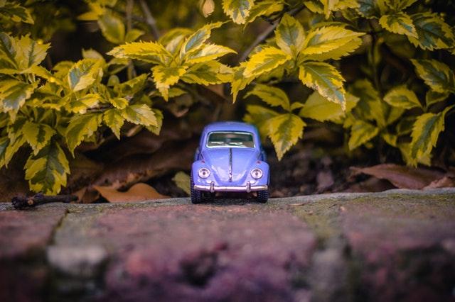 modré autíčko poblíž křoví.jpg