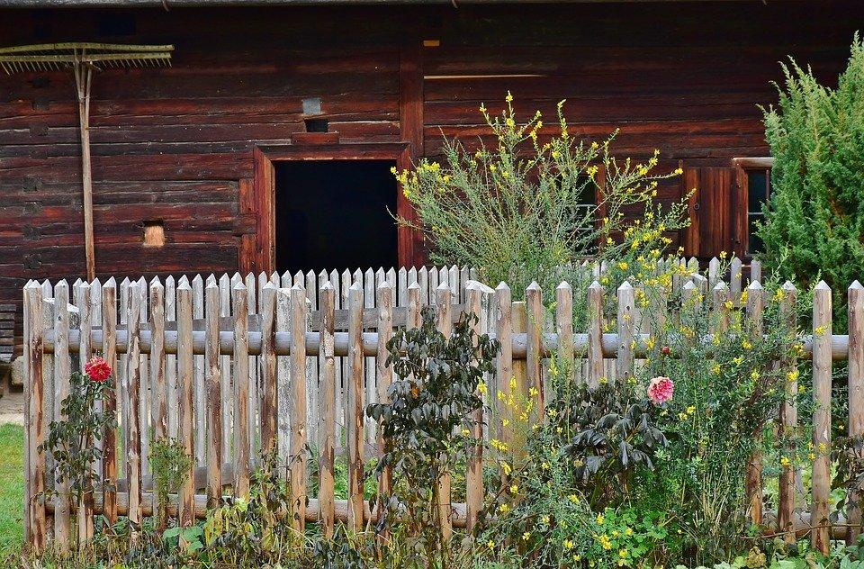 zahrada venkov